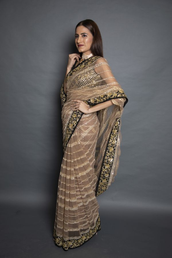 Beige Net Saree with Sequin Stripes with Choli